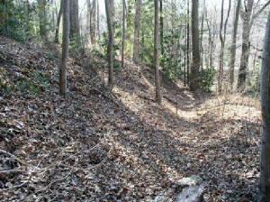 Civil War Battle of Asheville Earthworks.jpg