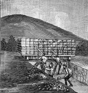 Union Soldiers and Confederate Fortifications.jpg